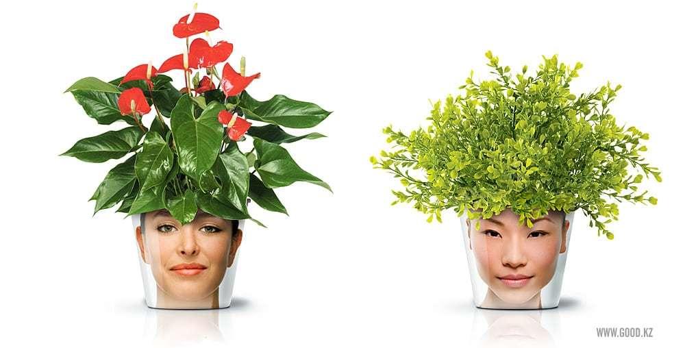Facepot