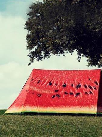 Tende da campeggio Fieldcandy