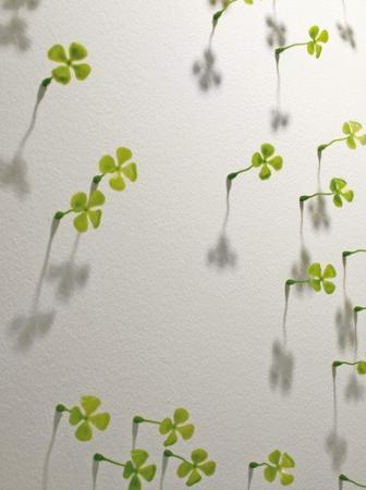Quadrifoglio portafortuna, Wall of Luck: il Muro della Fortuna
