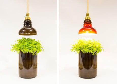 lampade-bottiglia-riciclo - Design Miss