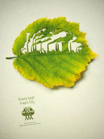 Illustrazioni Cut Leaf per 'Plant for the Planet'
