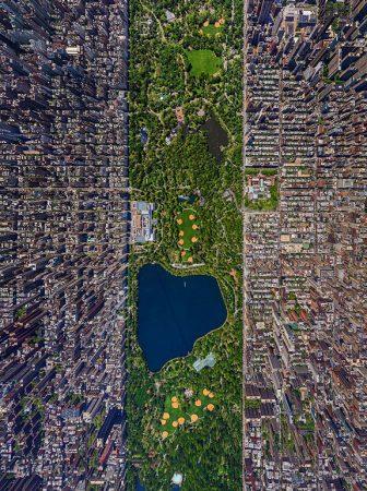 New York City's Central Park