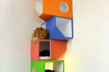 Catissa: modern wall mounted cat tree