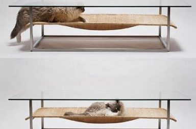 Cat hammock & Coffe table