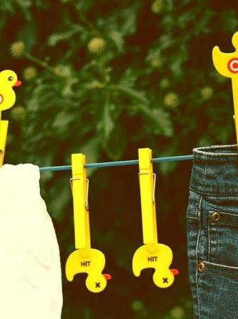 Sitting Duck Clothes Pegs