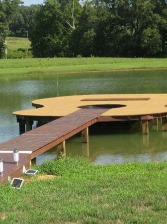Guitar shaped boat dock