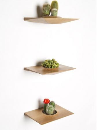 Plant Pods: l'eleganza del legno per piccoli vasi da interni