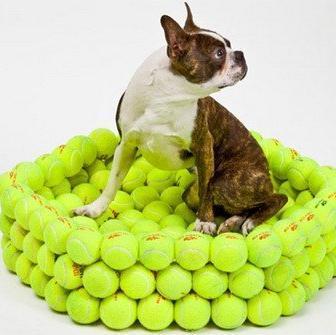 Tennis Gadget