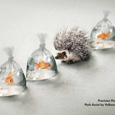 Volkswagen Park Assist: Hedgehog and Fish