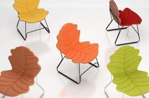 Chair Autumn colors