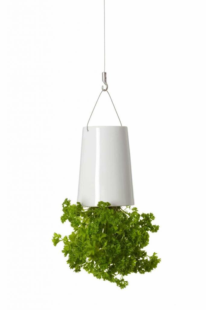 Sky Planter: il vaso rovesciato (7)