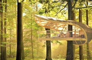 Un resort ecologico sospeso nella foresta