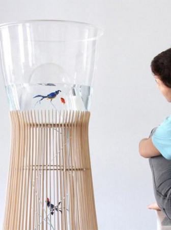 Acquario e gabbia per uccelli Duplex