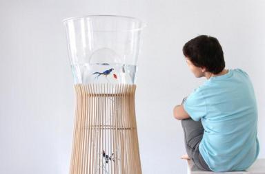 Duplex: Acquario e gabbia per uccelli