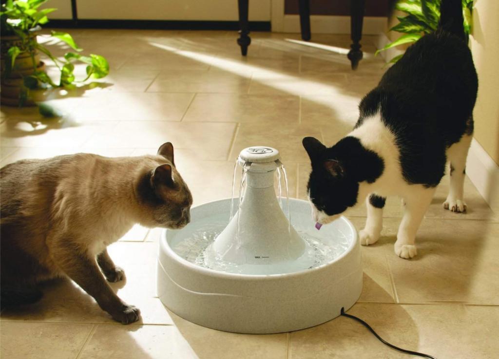 Fontana per animali Drinkwell 360 4