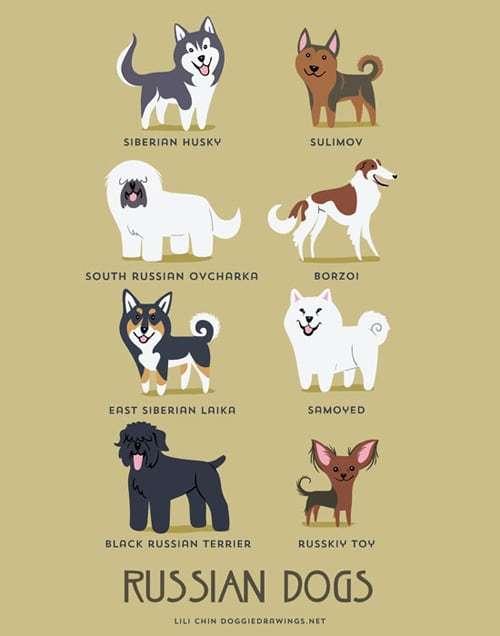 russian-dogs-illustration-by-lili-chin