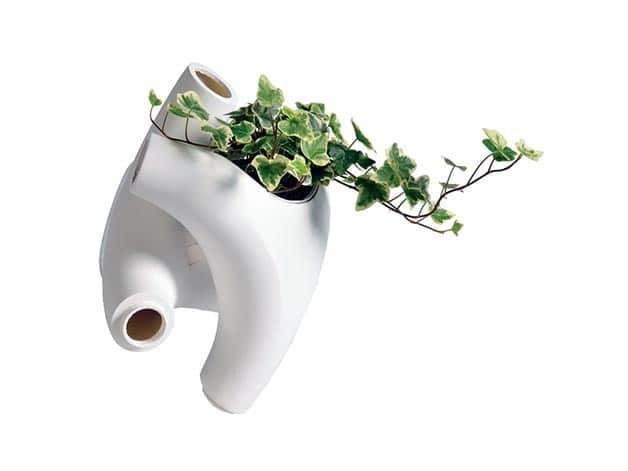 divisorio-piante