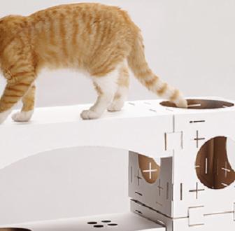 cuccia-gatto-design