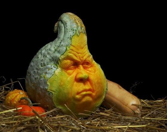 rayvillafanepumpkinsculptures_Most Expressive Pumpkin Faces Ever-11