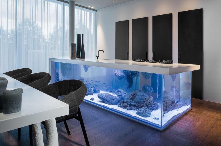 Un acquario spettacolare per cucine di lusso
