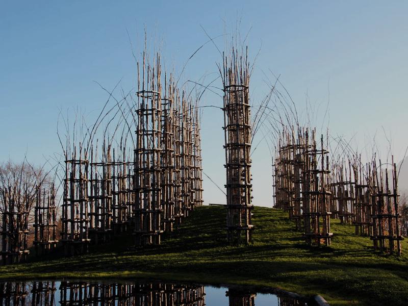 architettura-naturale