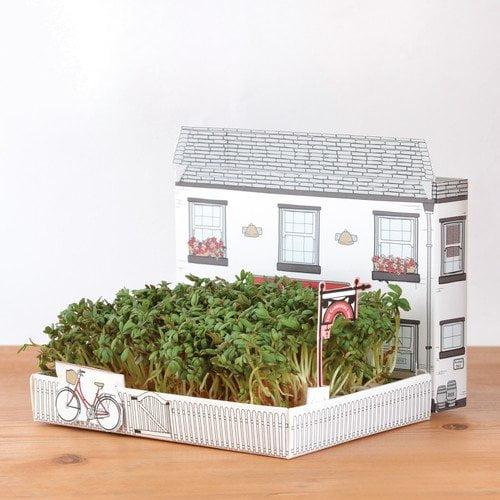giardino-miniatura