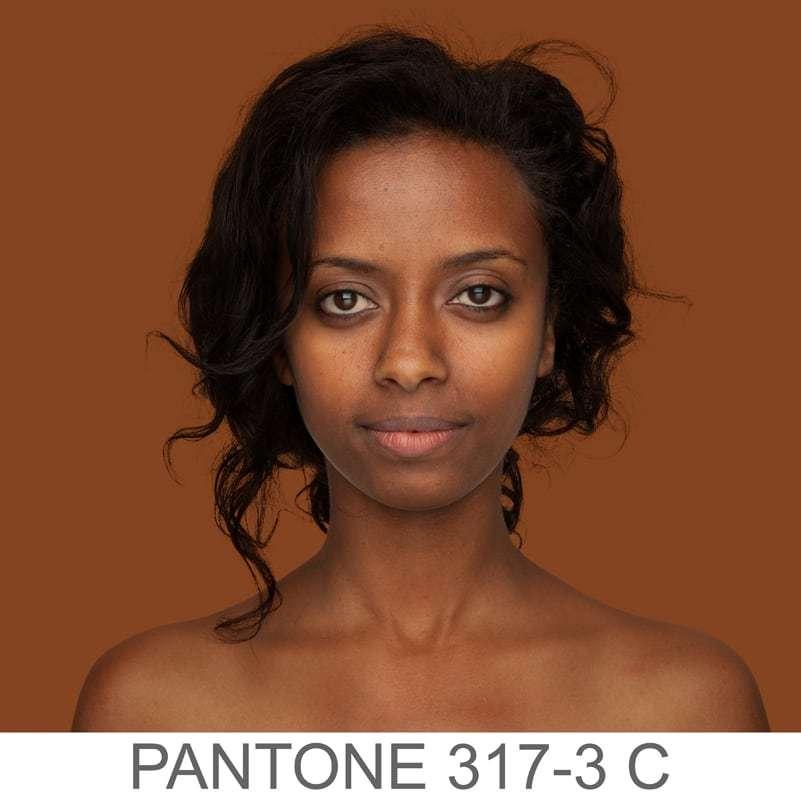 pantone 317-3 C e