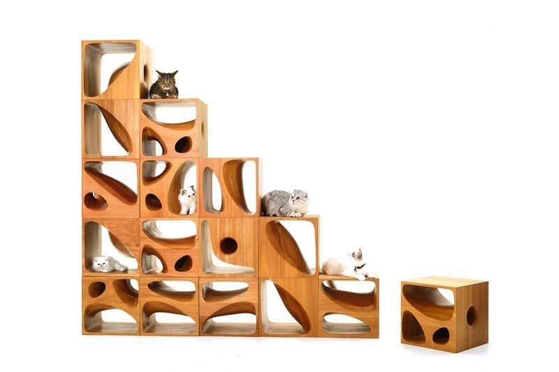 arredamento-gatto