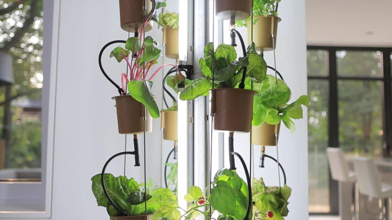 nutriTower-coltivazione-indoor
