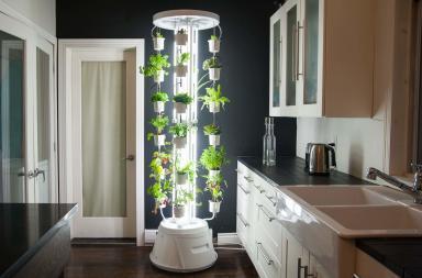 NutriTower, la coltivazione idroponica in casa!