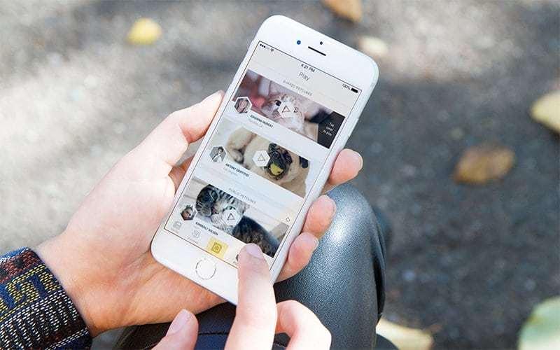 petcube-app