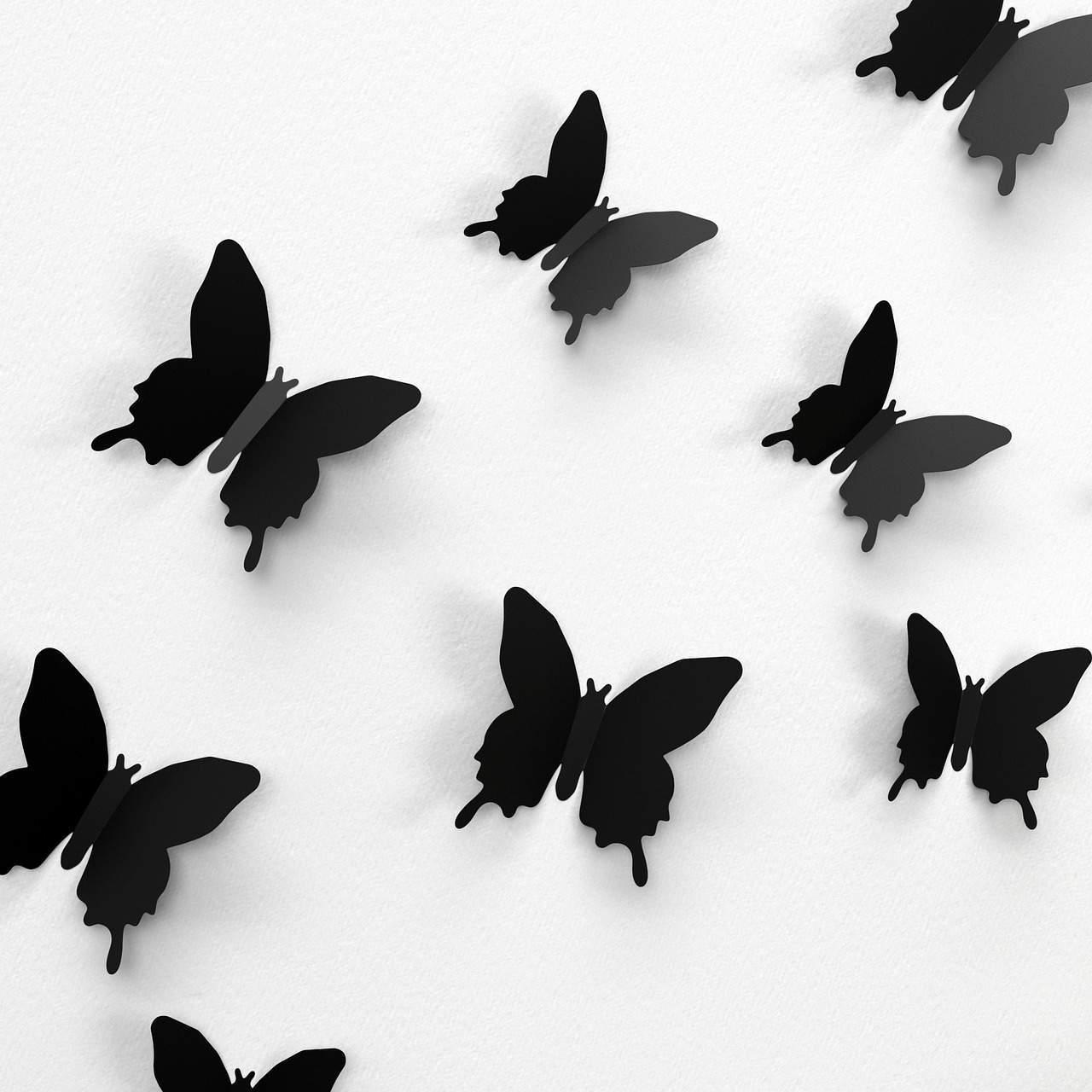 decorazioni-murali-butterfly