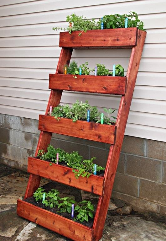 giardini-verticali-idee