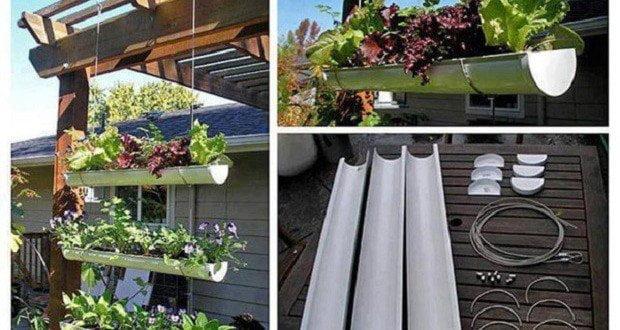 giardini-verticali