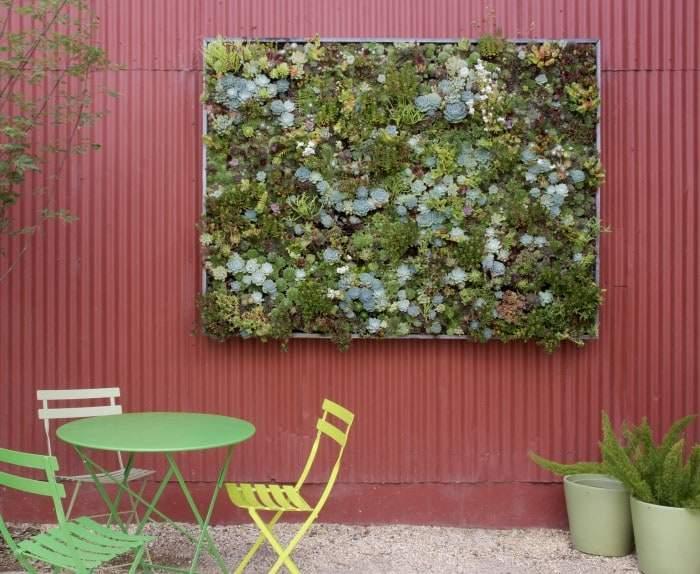 Giardini verticali per decorare le pareti design miss for Piante grasse in giardino
