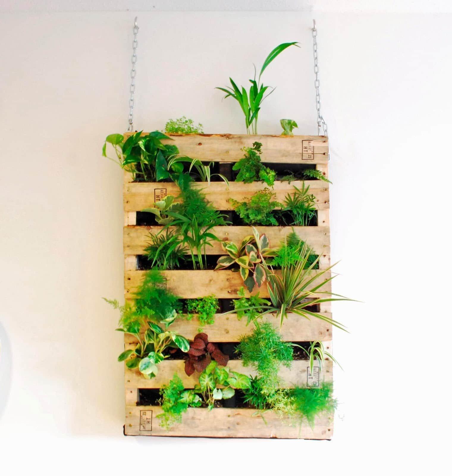 Giardini verticali per decorare le pareti design miss - Giardino pallet ...
