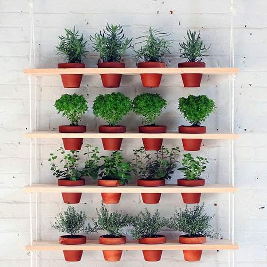 parete-verde