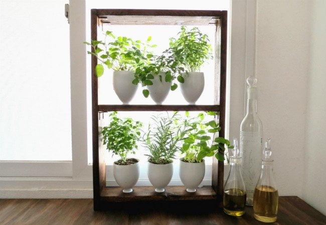 piante-aromatiche-cucina - Design Miss