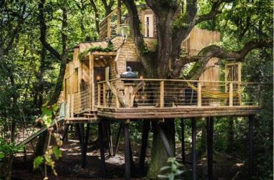 Woodsman's treehouse, lusso sostenibile nel Dorset