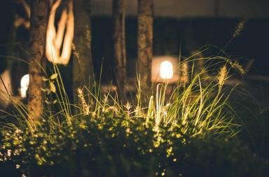 Godere del sole in giardino: arredamento e piante