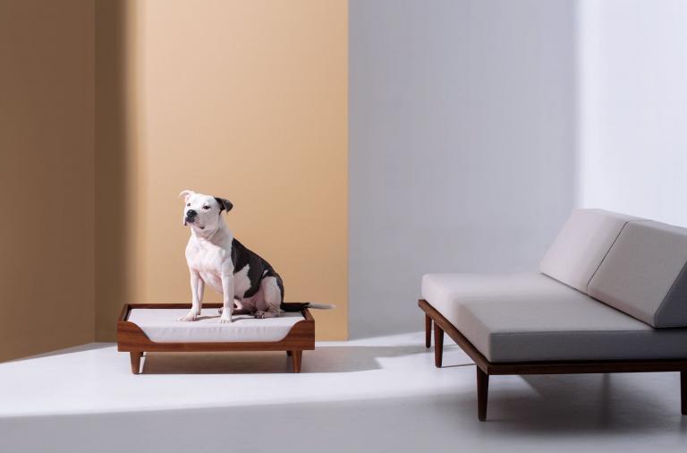 Case Study Modernica: il lettino in legno massello per i nostri amici a 4 zampe