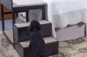 Letto per cani e gatti Penn Plax Buddy Bunk