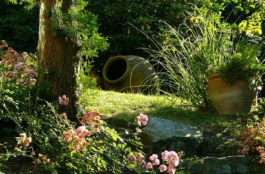 10 idee per arredare l'esterno: Piante da giardino